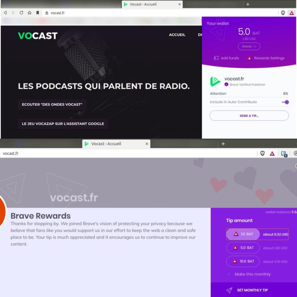 Le site de Vocast peut être soutenu simplement avec des dons en BAT, via le navigateur <a href='https://brave.com/voc810' target='_blank' rel='noreferrer'>Brave</a> (<a href='https://brave.com/brave-rewards/' target='_blank' rel='noreferrer'>Plus d'infos sur Brave Rewards</a>)